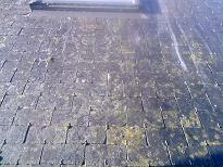 traitement anti mousse nettoyage tuile ardoise