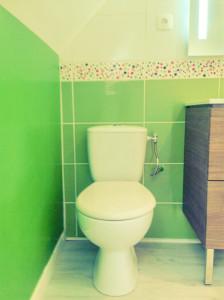 Douche, baignoire, vasque, lavabo, robinetterie, rénovation, WC
