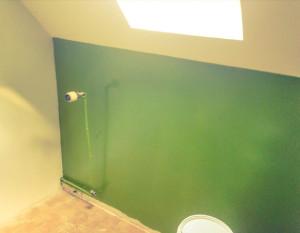 Douche, baignoire, vasque, lavabo, robinetterie, rénovation, peinture